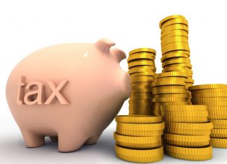 The Government Pay Taxes